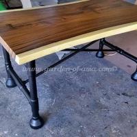ga29-table
